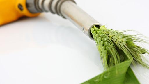Les biocarburants, les carburants verts qui polluent moins